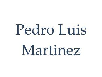 Pedro Luis Martinez Default Text Logo